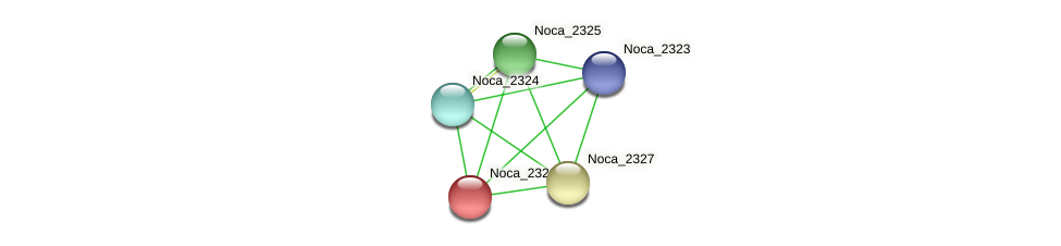 Noca_2326 protein (Nocardioides sp. JS614) - STRING interaction network