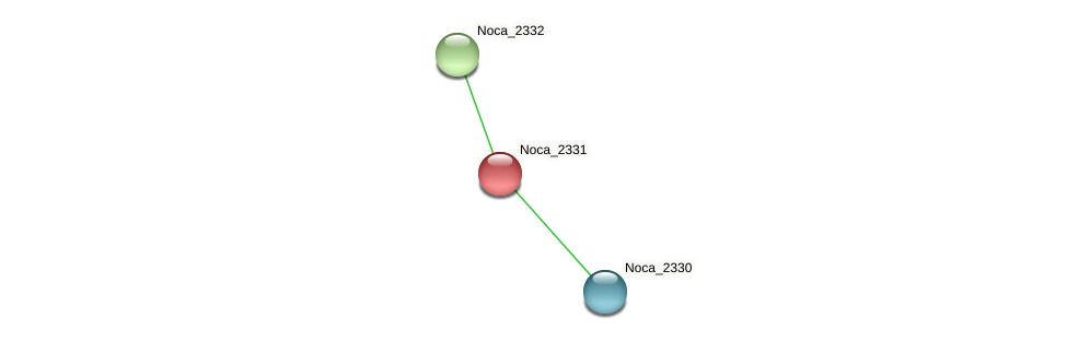 Noca_2331 protein (Nocardioides sp. JS614) - STRING interaction network