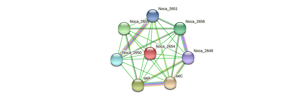 Noca_2654 protein (Nocardioides sp. JS614) - STRING interaction network