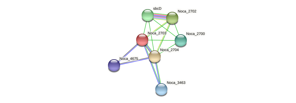 Noca_2703 protein (Nocardioides sp. JS614) - STRING interaction network