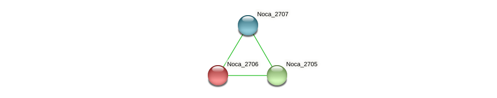 Noca_2706 protein (Nocardioides sp. JS614) - STRING interaction network
