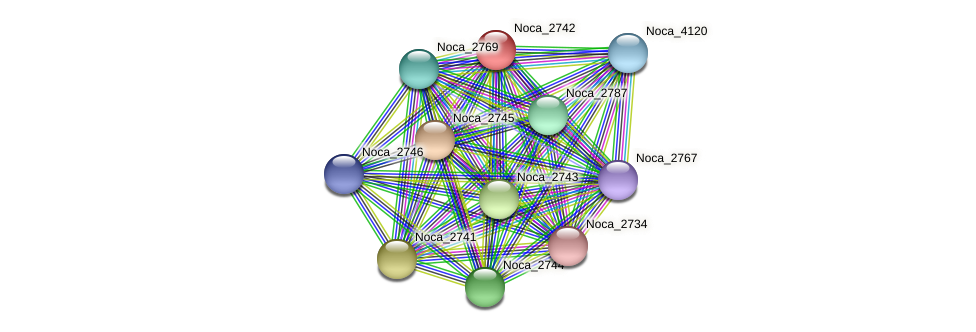 Noca_2742 protein (Nocardioides sp. JS614) - STRING interaction network
