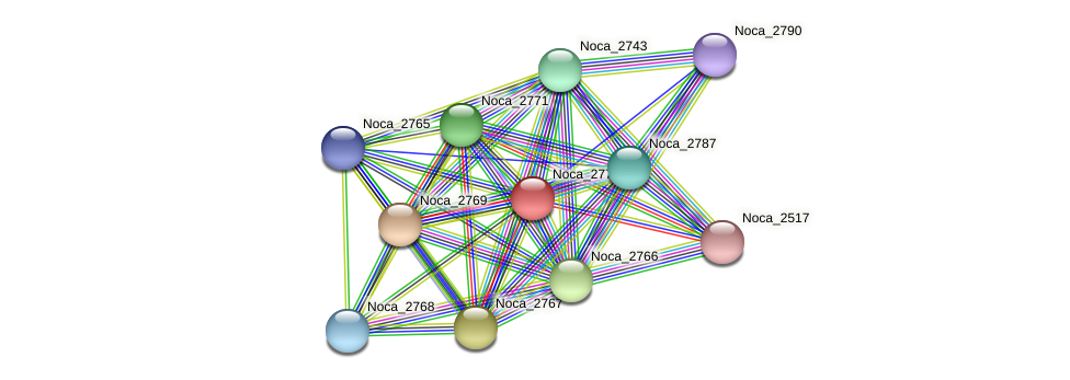 Noca_2770 protein (Nocardioides sp. JS614) - STRING interaction network