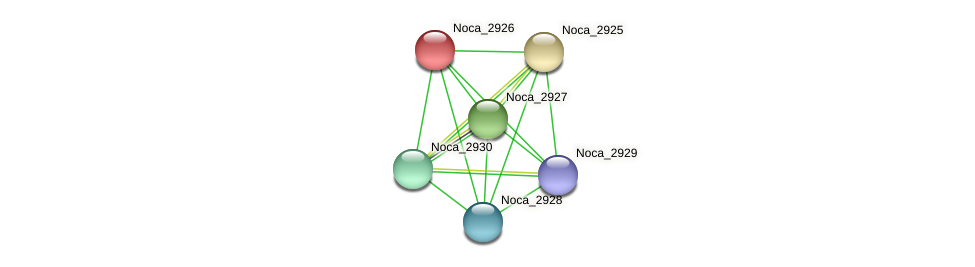 Noca_2926 protein (Nocardioides sp. JS614) - STRING interaction network