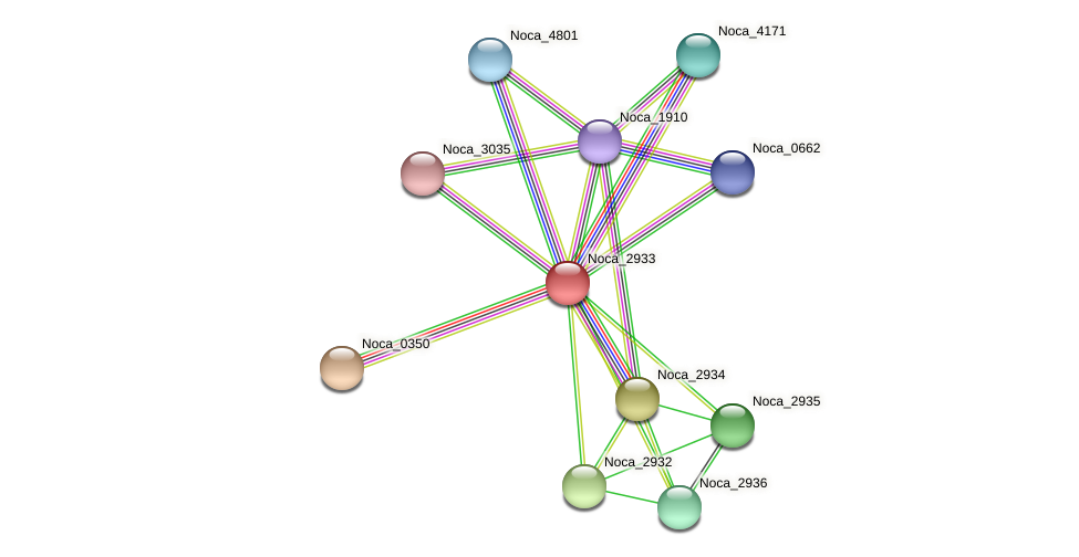 Noca_2933 protein (Nocardioides sp. JS614) - STRING interaction network