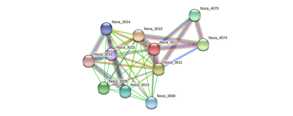 Noca_3012 protein (Nocardioides sp. JS614) - STRING interaction network