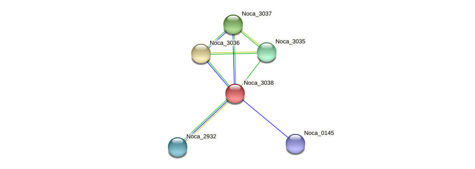 Noca_3038 protein (Nocardioides sp. JS614) - STRING interaction network