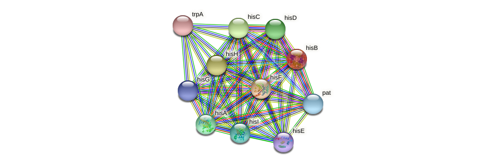 hisB protein (Nocardioides sp. JS614) - STRING interaction network