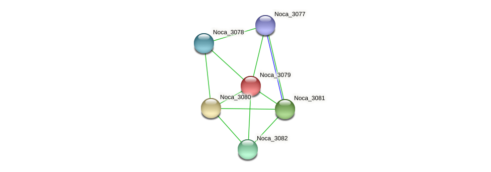 Noca_3079 protein (Nocardioides sp. JS614) - STRING interaction network