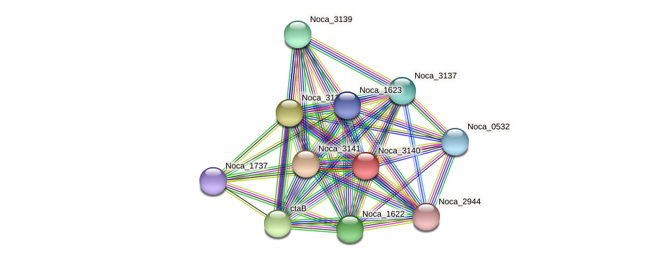 Noca_3140 protein (Nocardioides sp. JS614) - STRING interaction network