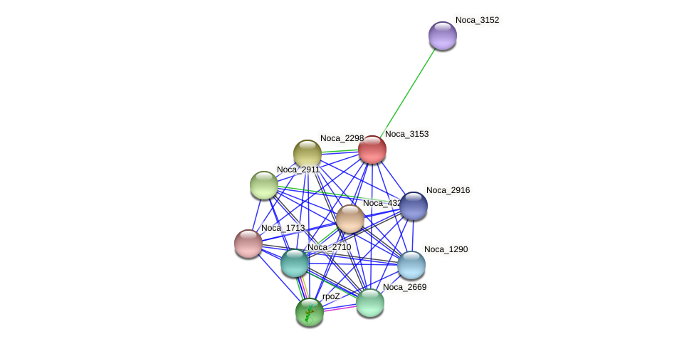 Noca_3153 protein (Nocardioides sp. JS614) - STRING interaction network