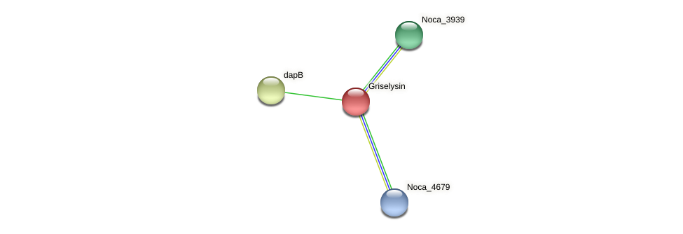 Noca_3166 protein (Nocardioides sp. JS614) - STRING interaction network