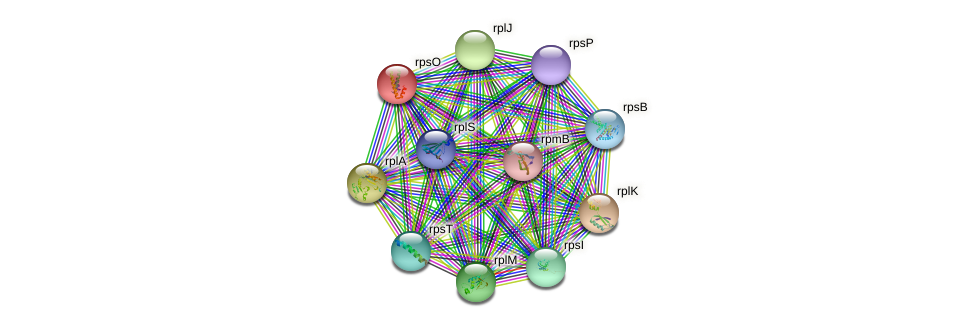 rpsO protein (Nocardioides sp. JS614) - STRING interaction network