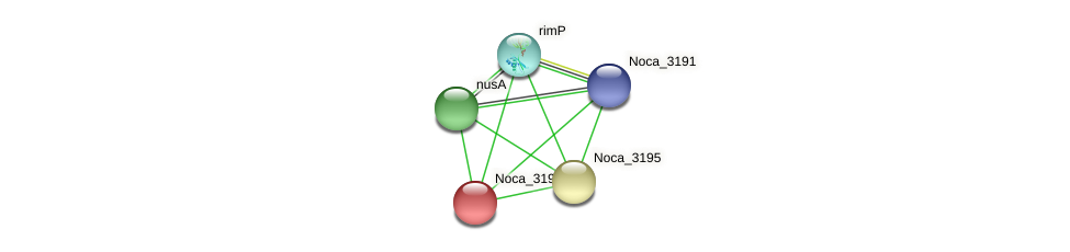 Noca_3194 protein (Nocardioides sp. JS614) - STRING interaction network