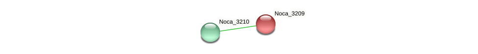 Noca_3209 protein (Nocardioides sp. JS614) - STRING interaction network