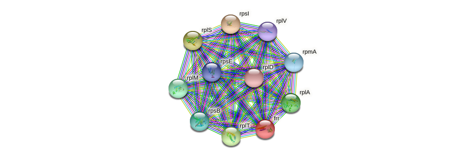 frr protein (Nocardioides sp. JS614) - STRING interaction network