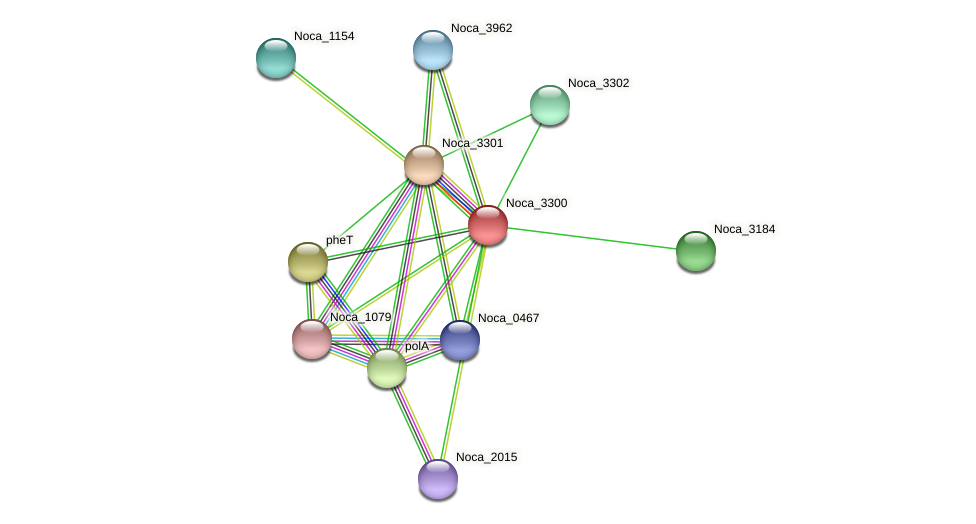 Noca_3300 protein (Nocardioides sp. JS614) - STRING interaction network