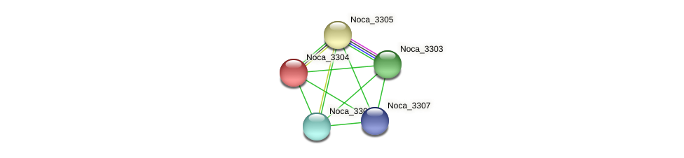 Noca_3304 protein (Nocardioides sp. JS614) - STRING interaction network