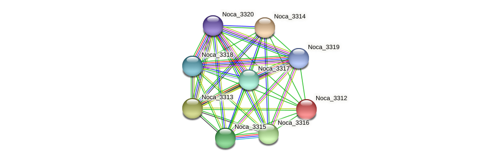Noca_3312 protein (Nocardioides sp. JS614) - STRING interaction network