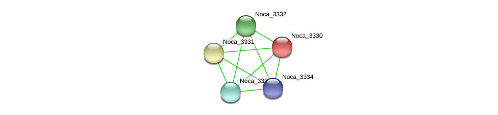 Noca_3330 protein (Nocardioides sp. JS614) - STRING interaction network