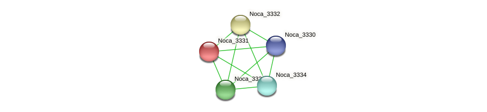 Noca_3331 protein (Nocardioides sp. JS614) - STRING interaction network