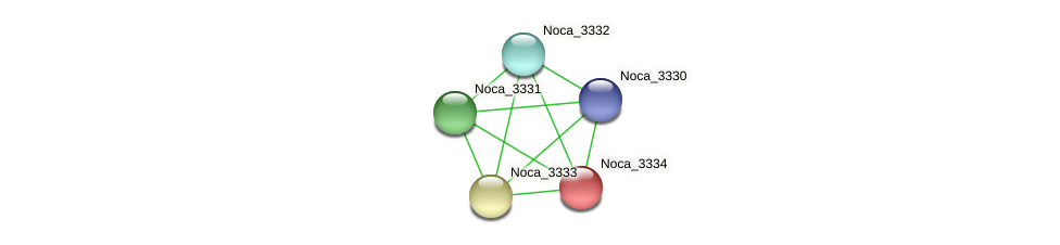 Noca_3334 protein (Nocardioides sp. JS614) - STRING interaction network