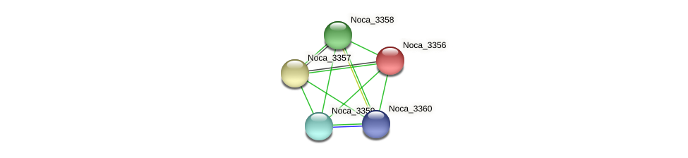 Noca_3356 protein (Nocardioides sp. JS614) - STRING interaction network
