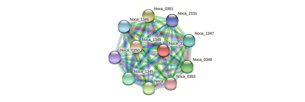 Noca_3377 protein (Nocardioides sp. JS614) - STRING interaction network