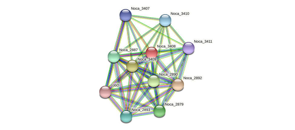 Noca_3408 protein (Nocardioides sp. JS614) - STRING interaction network