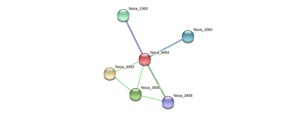 Noca_3454 protein (Nocardioides sp. JS614) - STRING interaction network