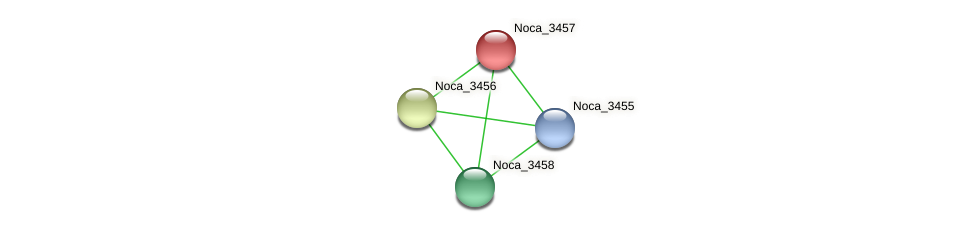Noca_3457 protein (Nocardioides sp. JS614) - STRING interaction network