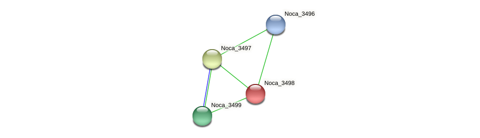 Noca_3498 protein (Nocardioides sp. JS614) - STRING interaction network