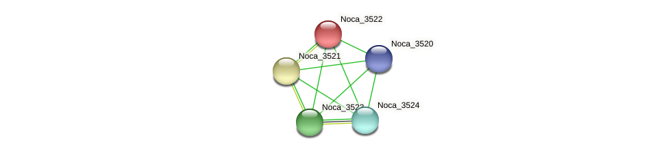 Noca_3522 protein (Nocardioides sp. JS614) - STRING interaction network