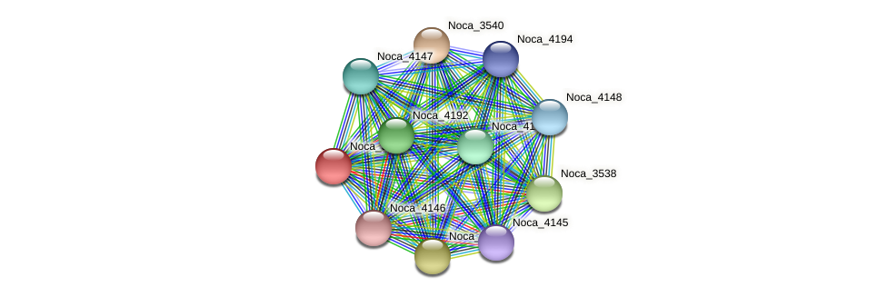 Noca_3539 protein (Nocardioides sp. JS614) - STRING interaction network