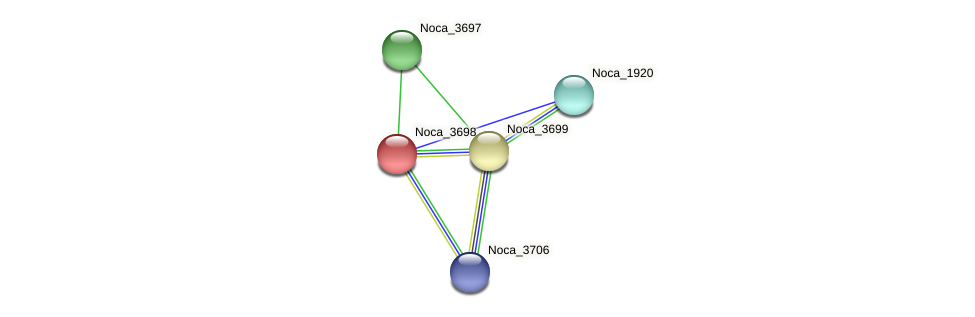 Noca_3698 protein (Nocardioides sp. JS614) - STRING interaction network
