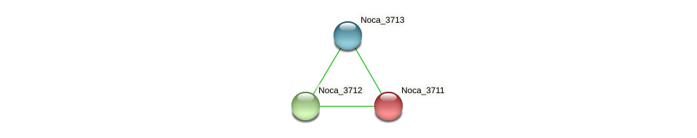 Noca_3711 protein (Nocardioides sp. JS614) - STRING interaction network