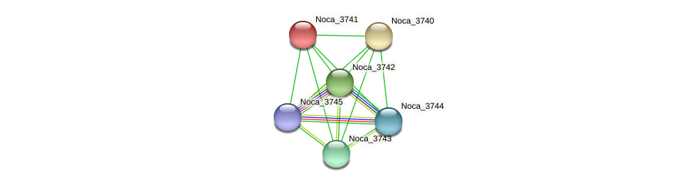 Noca_3741 protein (Nocardioides sp. JS614) - STRING interaction network