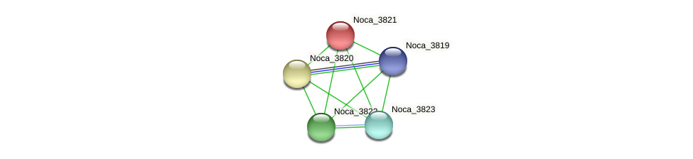 Noca_3821 protein (Nocardioides sp. JS614) - STRING interaction network
