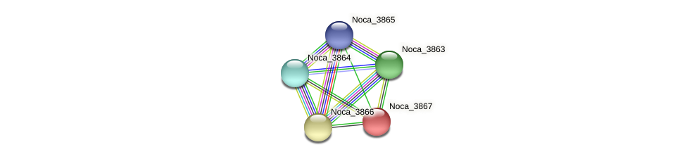Noca_3867 protein (Nocardioides sp. JS614) - STRING interaction network
