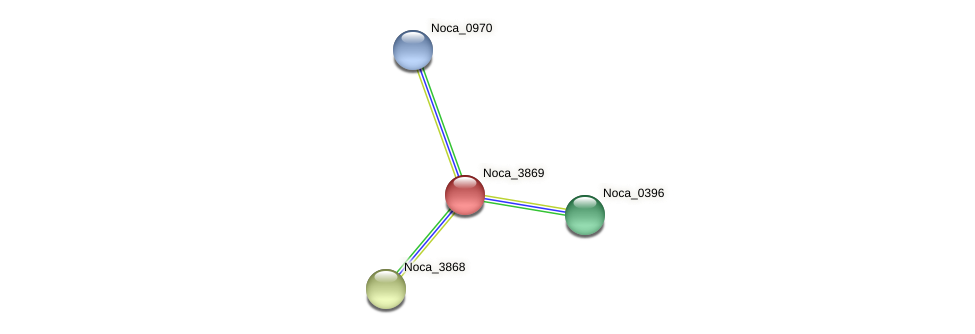 Noca_3869 protein (Nocardioides sp. JS614) - STRING interaction network
