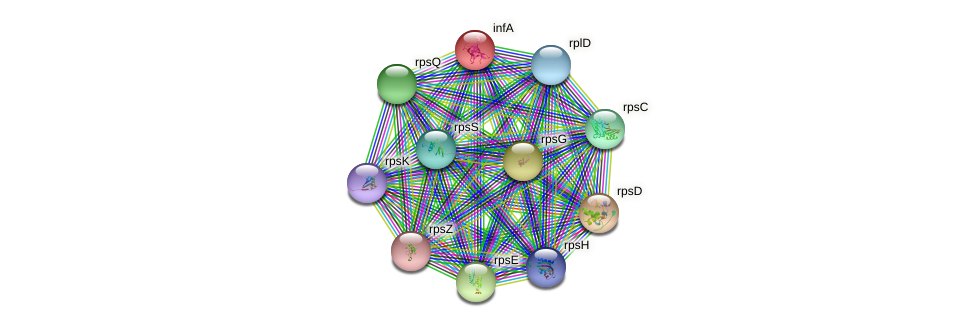 infA protein (Nocardioides sp. JS614) - STRING interaction network