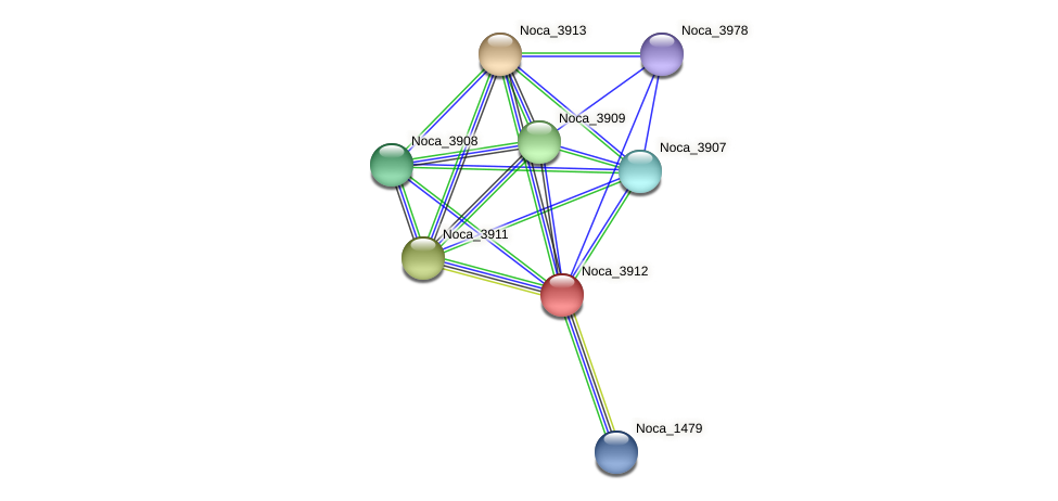 Noca_3912 protein (Nocardioides sp. JS614) - STRING interaction network
