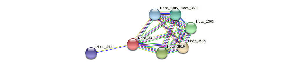 Noca_3914 protein (Nocardioides sp. JS614) - STRING interaction network