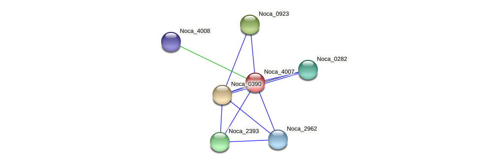 Noca_4007 protein (Nocardioides sp. JS614) - STRING interaction network