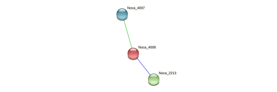 Noca_4008 protein (Nocardioides sp. JS614) - STRING interaction network