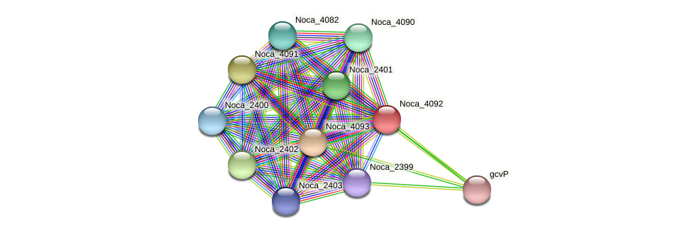 Noca_4092 protein (Nocardioides sp. JS614) - STRING interaction network