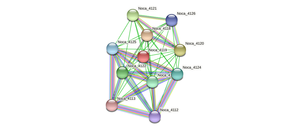 Noca_4119 protein (Nocardioides sp. JS614) - STRING interaction network