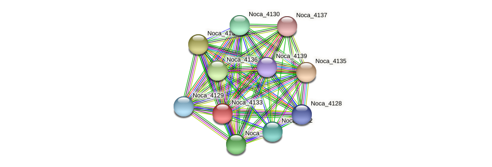 Noca_4133 protein (Nocardioides sp. JS614) - STRING interaction network