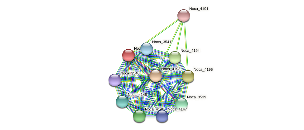 Noca_4192 protein (Nocardioides sp. JS614) - STRING interaction network