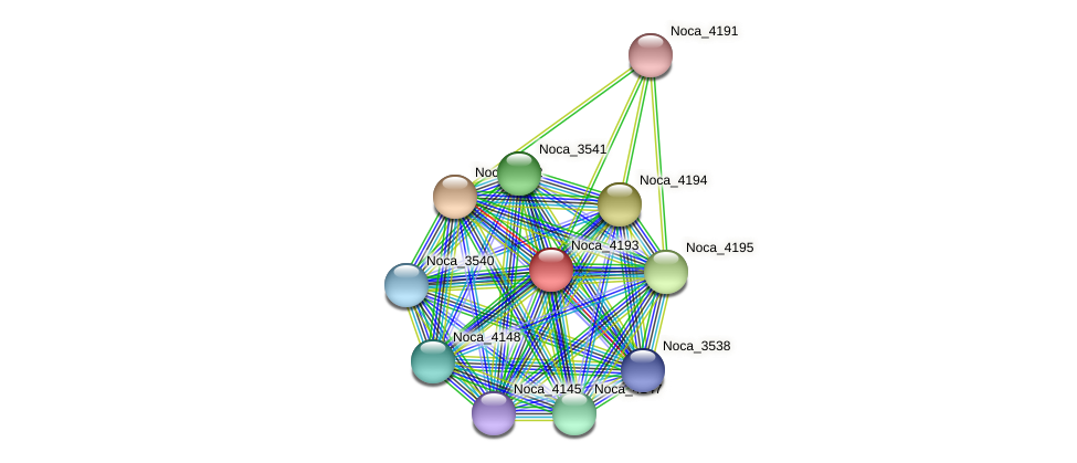 Noca_4193 protein (Nocardioides sp. JS614) - STRING interaction network